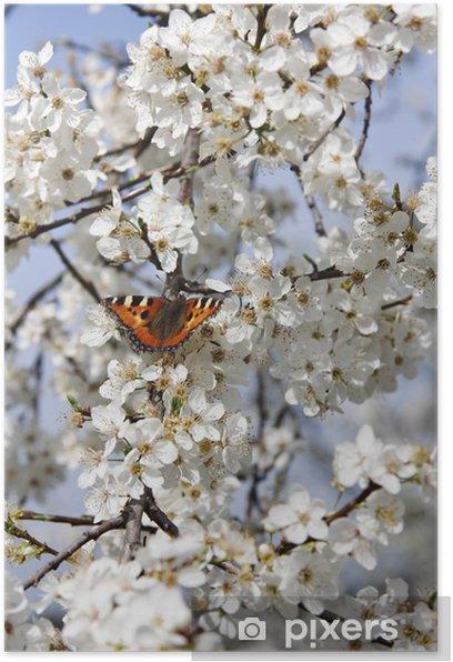 Schmetterling auf Kirschblüte vertikal Poster - Themes
