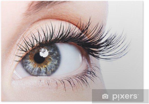 Poster Schoonheid vrouwelijke oog met krul lange valse wimpers - Thema's