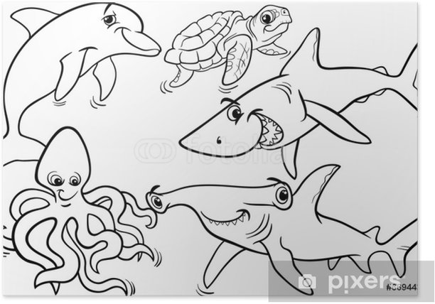 sea life animals and fish coloring page Poster