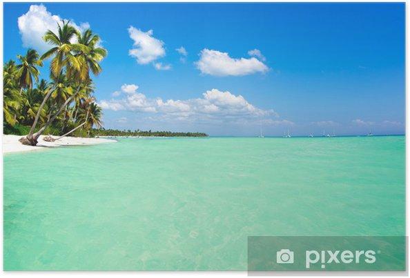 Poster Sea - Palmbomen