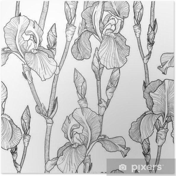Poster Seamless avec de belles fleurs d'iris (noir et blanc) - Plantes et fleurs