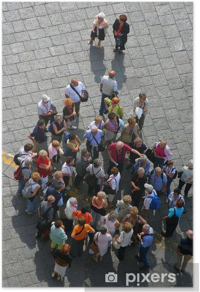 Póster Selva - Grupos y multitudes