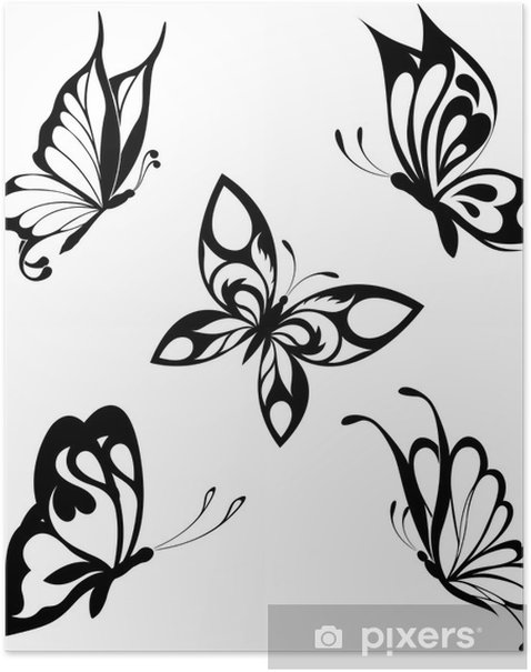 Set Black White Butterflies Of A Tattoo Poster