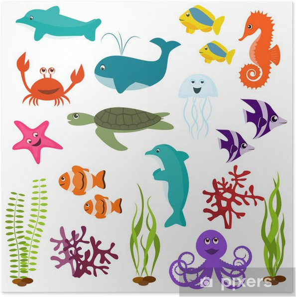 Set of sea animals Poster - Wall decals