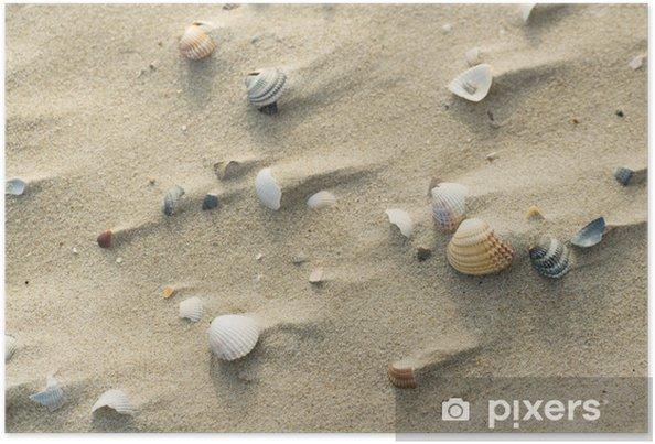 Poster Shells bij winderig strand - Vakantie