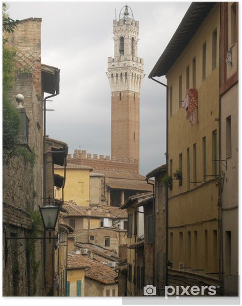 Siena vista torre del Mangia dai vicoli del palio Poster - Holidays