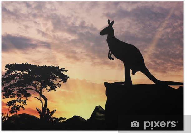 Poster Silhouette d'un kangourou - Mammifères