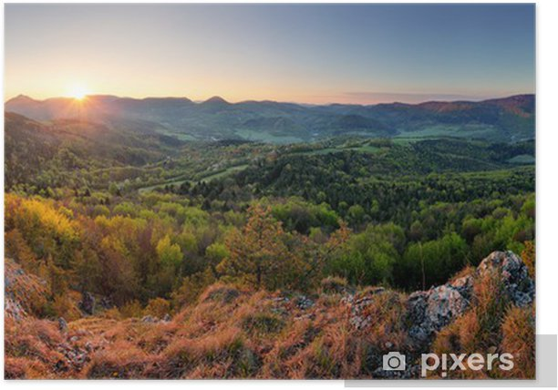Slovakia Spring Forest Panorama Poster Pixers We Live To Change
