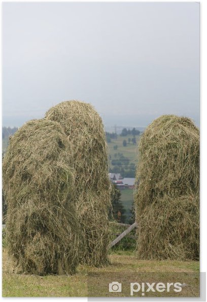 snopki Poster - Countryside