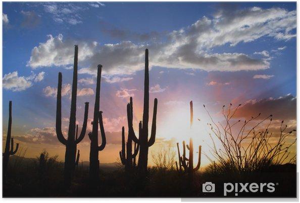 Poster Solnedgång och Saguarokaktusen i Saguaro nationalpark - Himmel