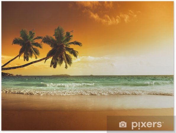 Poster Solnedgång på stranden i Karibiska havet -