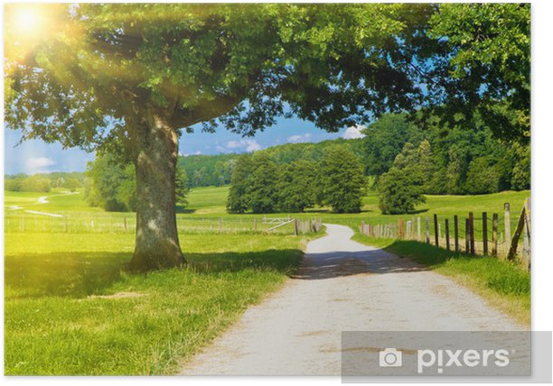 Poster Sommertag in der Natur - Saisons