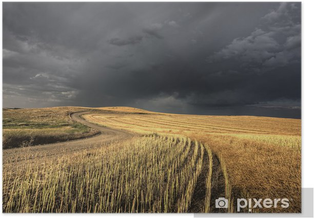Storm Clouds Saskatchewan Poster - Countryside