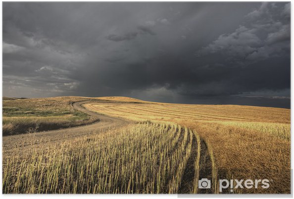 Poster Storm Clouds Saskatchewan - Campagne