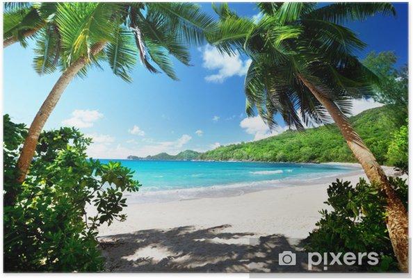Poster Strand, Mahe, Seychellen - Palmbomen