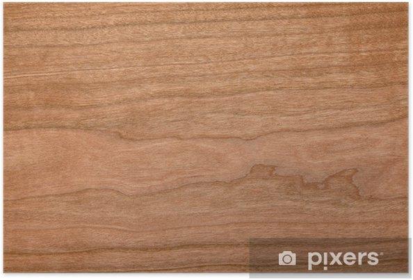 Poster Structure du bois - Thèmes
