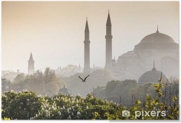 Poster Sultanahmet Camii / Blue Mosque, Istanbul, Turkey - Stijlen