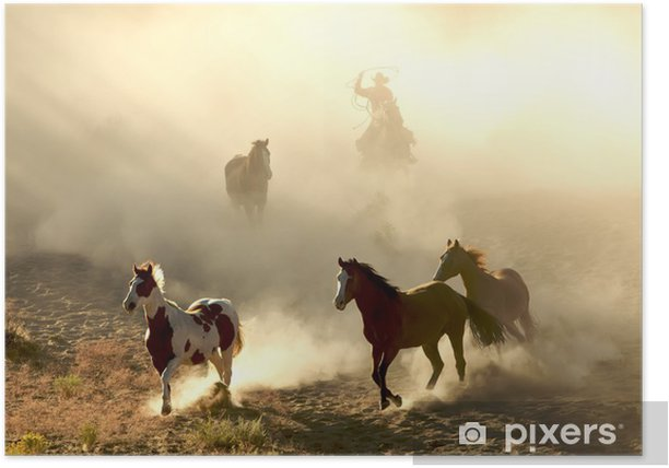 Sunlight Horses and cowboy galloping and through the desert Poster - Themes