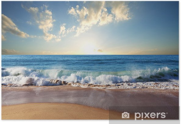 Sunset at the beach Poster - Nature