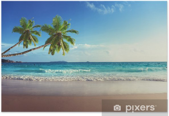 sunset on Seychelles beach Poster - Palm trees