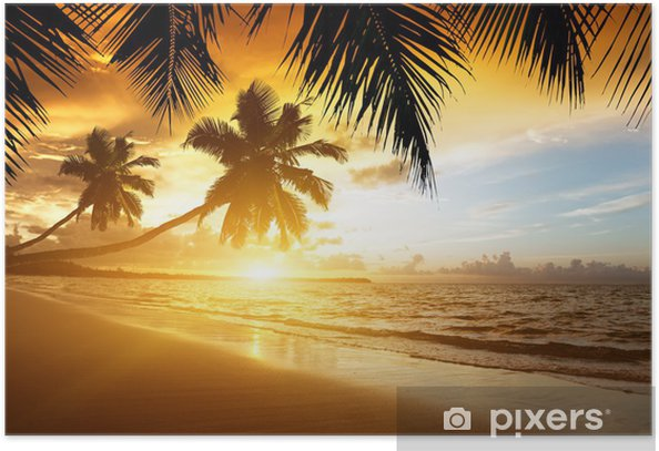 sunset on the Caribbean sea Poster - Palm trees