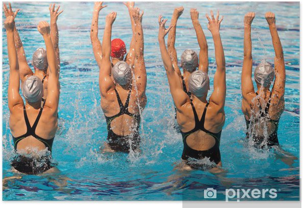 synchronized swimmers Poster - Themes