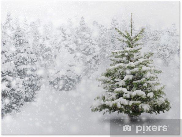 Tannenbaum Mit Schneefall.Tannenbaum In Schönem Schneefall Poster