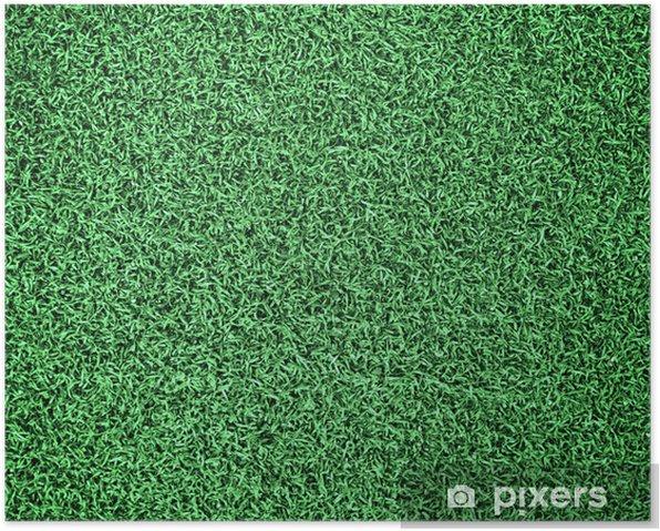 Poster Terrain en herbe - Textures