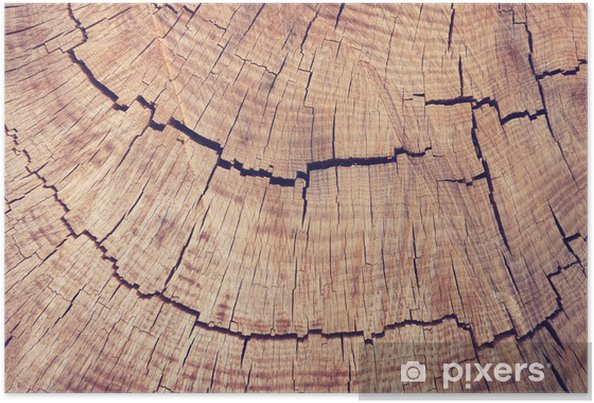 Texture Bois Vintage