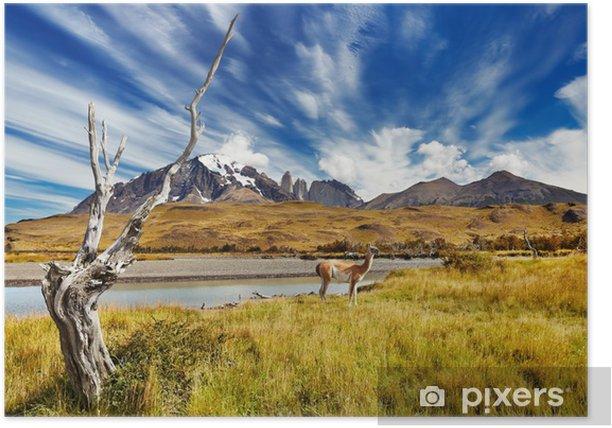 Poster Torres del Paine, au Chili - Thèmes