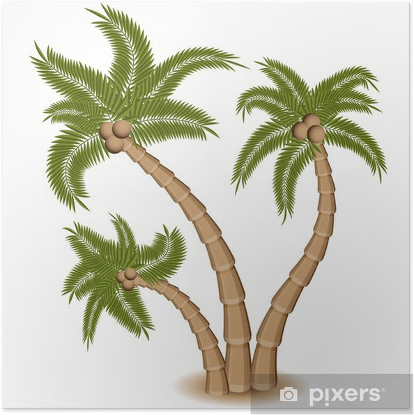 Poster Trois Palm Tree Group - Sticker mural