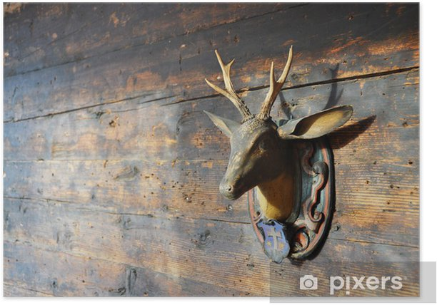 Poster Trophée sur un mur en bois - Arrière plans