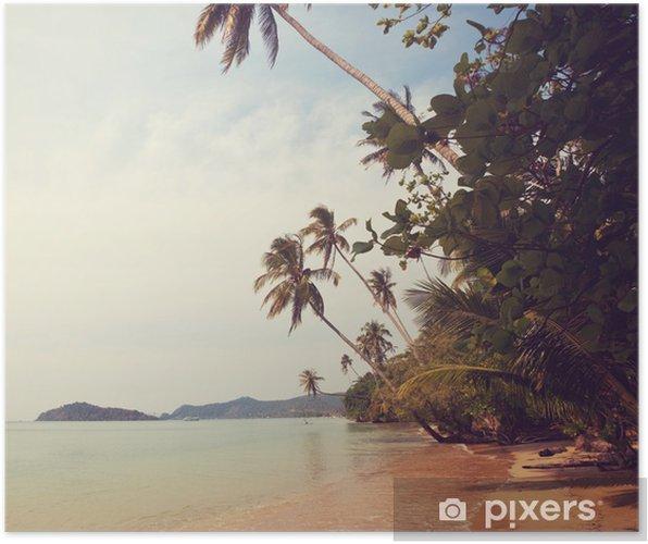Póster Tropical beach - Naturaleza y zonas salvajes