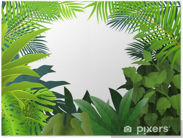 Poster Tropical forest background - Arbres