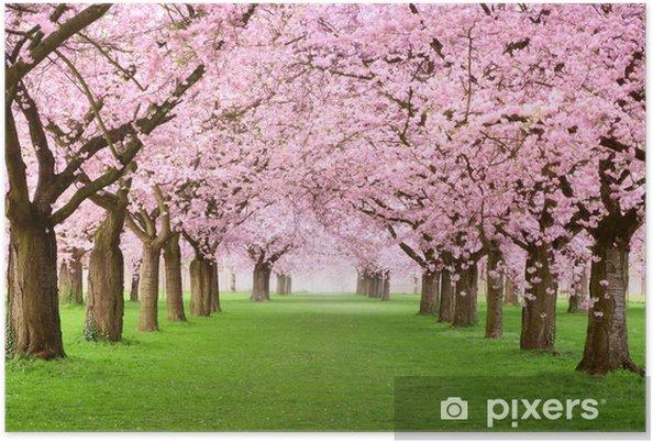 Poster Tuinen in volle bloei - Bestemmingen