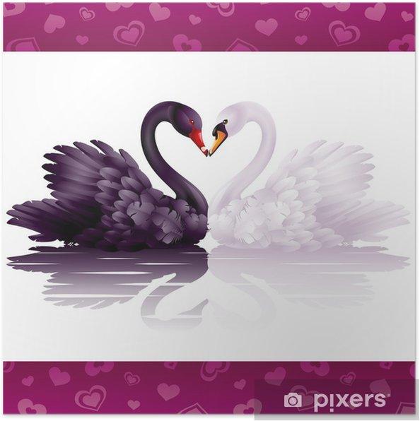 Poster Twee bevallige zwanen in de liefde: zwart-wit hart - Zwanen