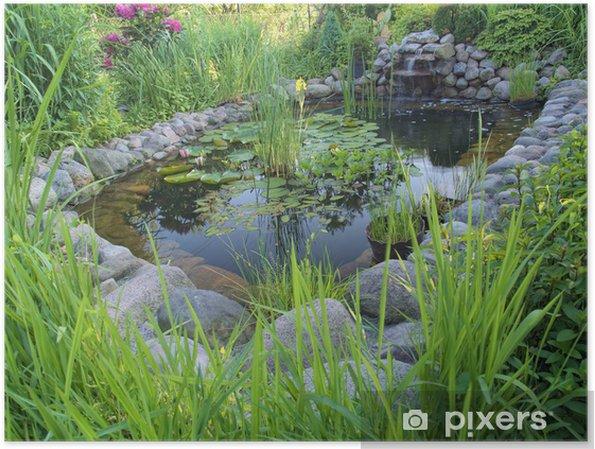 Poster Un Bassin Avec Cascade Dans Le Jardin