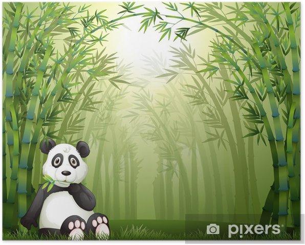 Póster Un oso panda y el bosque de bambú - Fondos