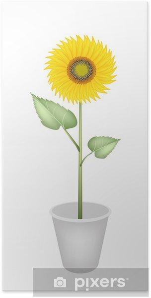 Poster Un parfait Tournesol élégant dans un pot de fleur - Vente