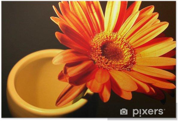 Poster Unique gerbera orange dans le vase - Fleurs