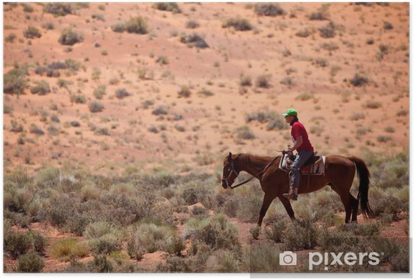 Poster USA - cheval dans Monument Valley - Amérique