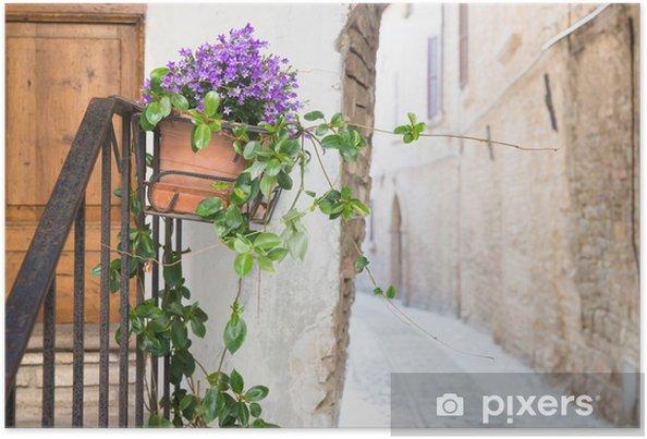 Poster Vase avec des fleurs dans l'allée - Maisons et jardins
