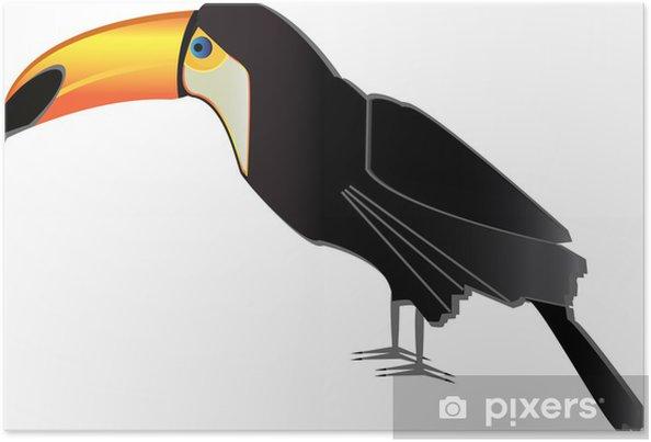 Poster Vecteur toucan - Oiseaux