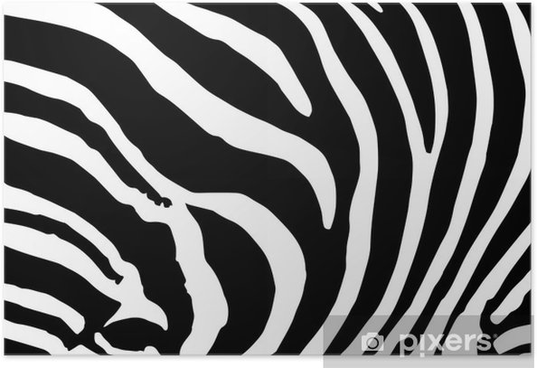 Vector Abstract Skin Texture Of Zebra Print Pattern Poster Pixers We Live To Change