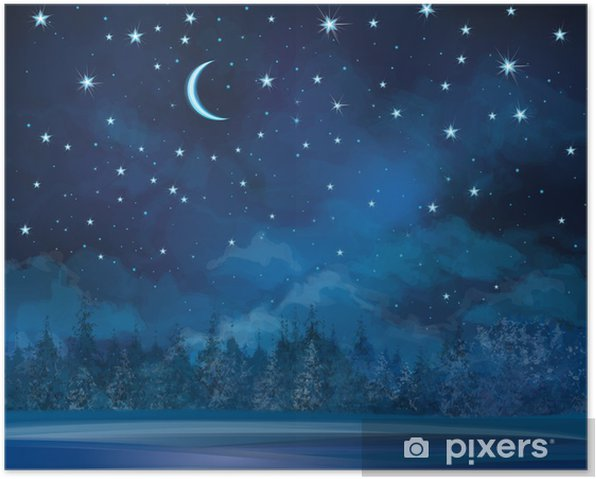 Vector night winter scene, sky and forest background. Poster - Themes