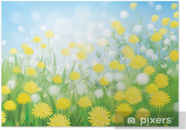 46b1c768ee86f Vector of spring background with white dandelions. Poster • Pixers ...