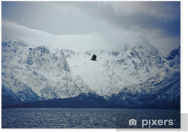 Vesterålen, Lofoten Islands, Norway Poster - Landscapes