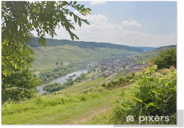 view on Moselle valley and Mosel river in summer day, Germany Poster - Europe