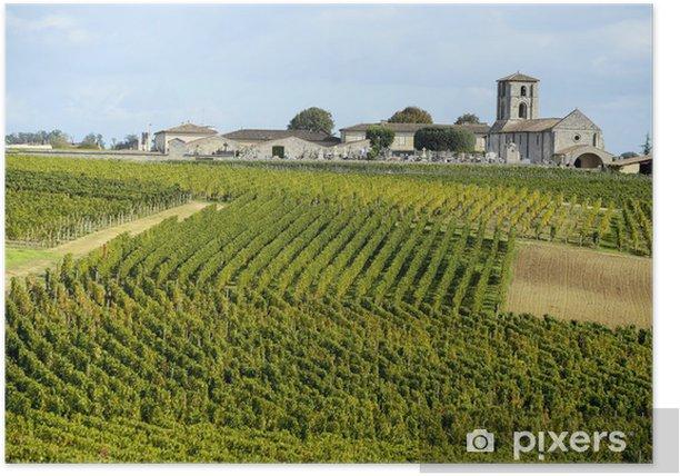 Vineyards of Saint Emilion, Bordeaux Vineyards Poster - Ecology