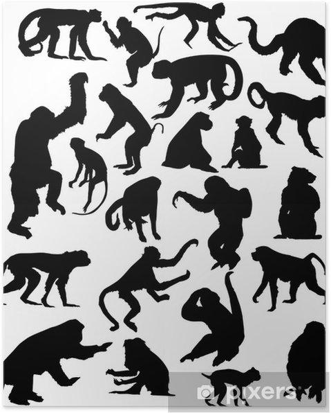 Poster Vingt-deux silhouettes de singes isolés noir - Mammifères